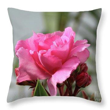 Oleander Splendens Giganteum 2 Throw Pillow