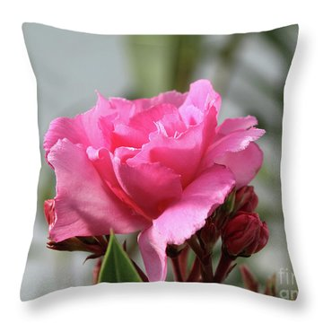 Oleander Splendens Giganteum 2 Throw Pillow