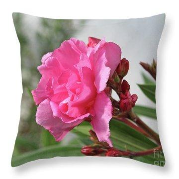 Oleander Splendens Giganteum 4 Throw Pillow