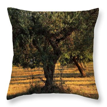 Olive Grove 3 Throw Pillow