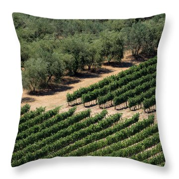 Olive Grove Meets Vineyard Throw Pillow