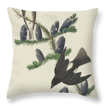 Olive-sided Flycatcher Throw Pillow by Dreyer Wildlife Print Collections
