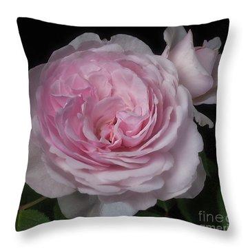 Olivia Austin Rose Throw Pillow