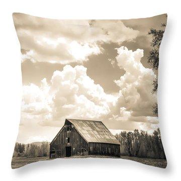 Olsen Barn Thunderstorm Throw Pillow