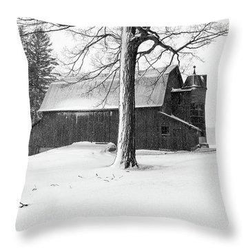 Olsen Farm 2 Throw Pillow