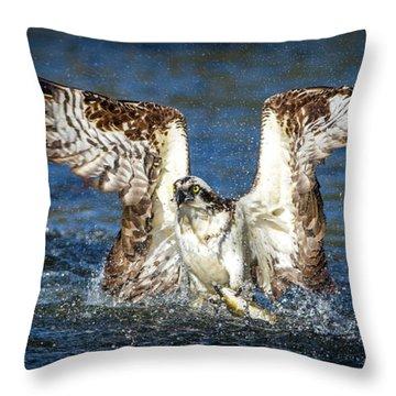 Olympian Catch  Throw Pillow