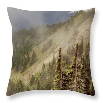 Olympic Range From Hurricane Ridge Throw Pillow by Peter J Sucy