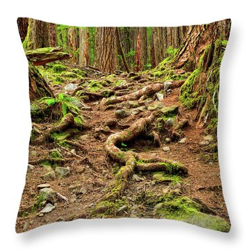 Olympic Roots Throw Pillow