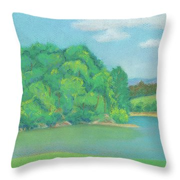 Omega Afternoon Throw Pillow