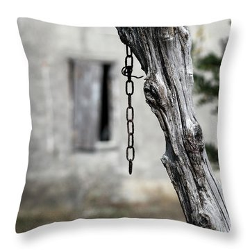 Throw Pillow featuring the photograph Omen by Helga Novelli