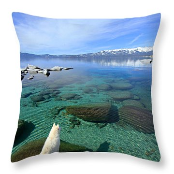 On A Clear Day You Can See Forever Throw Pillow
