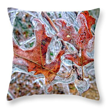 On A Cold Day Throw Pillow