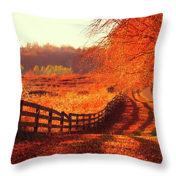 On A Day Like Today Throw Pillow