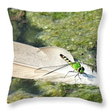 On A Feather Raft Throw Pillow
