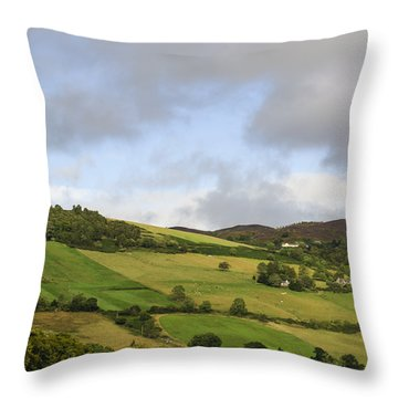 Throw Pillow featuring the photograph On A Hill by Christi Kraft