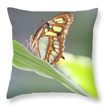 On A Leaf Throw Pillow
