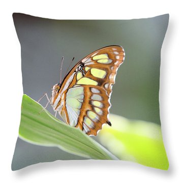 On A Leaf Throw Pillow