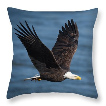 On A Mission Throw Pillow
