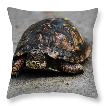 Throw Pillow featuring the photograph On A Mission by Skip Willits