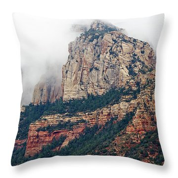 Throw Pillow featuring the photograph On A Misty Day by Phyllis Denton