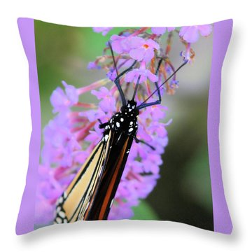On An Angle Throw Pillow by Karol Livote