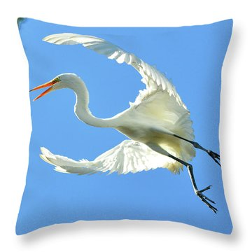 On Approach Landing 2 Throw Pillow
