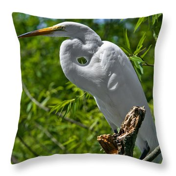 On Break Throw Pillow by Christopher Holmes