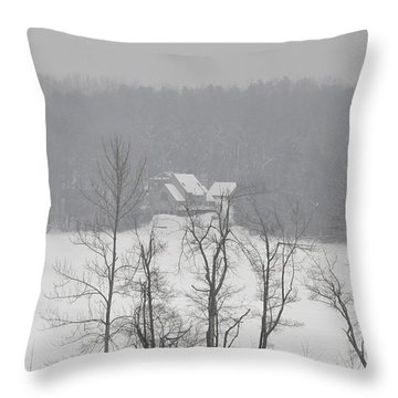 Throw Pillow featuring the photograph On Demond Pond by John Black