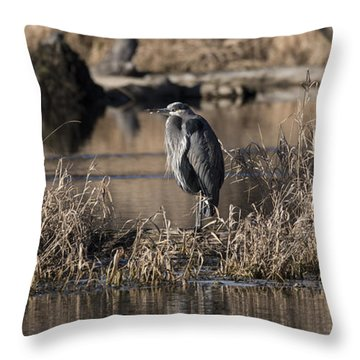 On Duty Throw Pillow by Rod Wiens