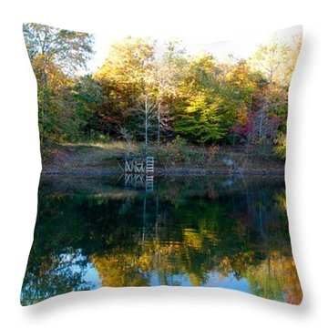 On Gober's Pond Throw Pillow