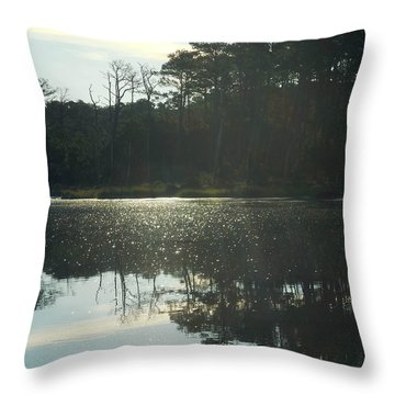 On Golden Bay Throw Pillow