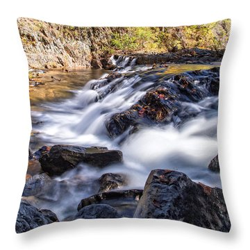 On Jennings Creek Throw Pillow