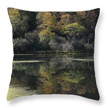 On Lethe's Bank Throw Pillow