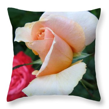 On-looker Throw Pillow by Carol Sweetwood