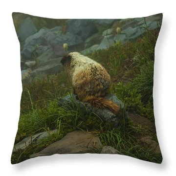 On Lookout Throw Pillow