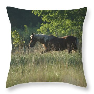 On My Own Throw Pillow by Heidi Poulin