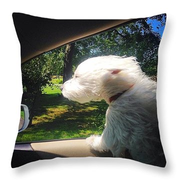 Trip To The Groomer Throw Pillow