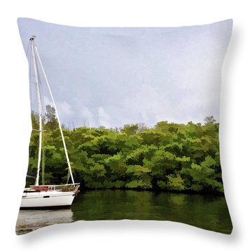 On Quiet Waters Throw Pillow