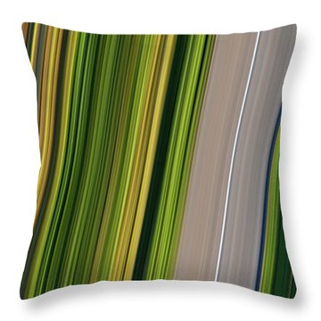 On Road II Throw Pillow