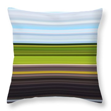On Road IIi Throw Pillow