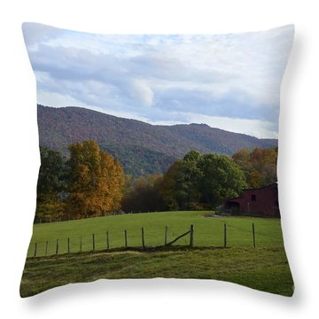 On Sully Road Throw Pillow