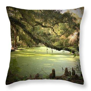 On Swamp's Edge Throw Pillow by Scott Pellegrin