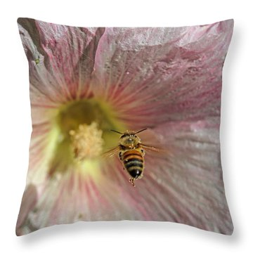On Target Throw Pillow by Alana Thrower