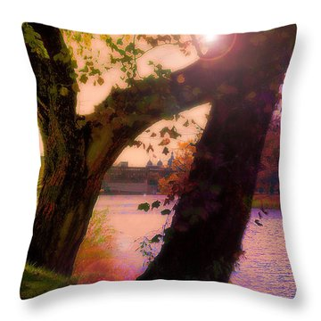 On The Bank Throw Pillow by Kat Besthorn