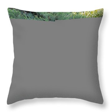 On The Banks Of The Pool Throw Pillow