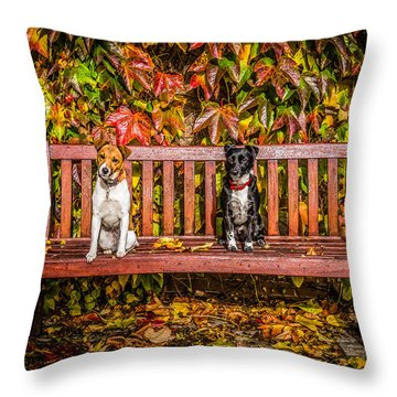 On The Bench Throw Pillow