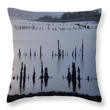On The Clyde Throw Pillow
