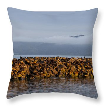 On The Columbia Throw Pillow