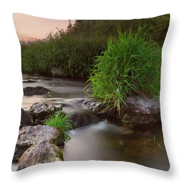 On The Edge Of Time Throw Pillow