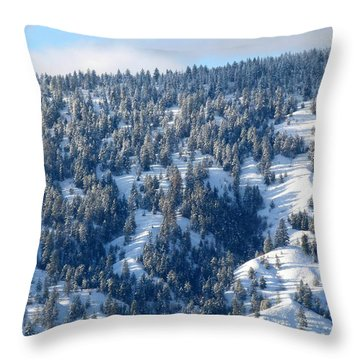 Throw Pillow featuring the photograph On The Far Side by Will Borden